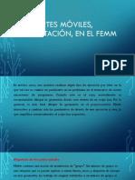Partes móviles, rotación, en el FEMM.pptx