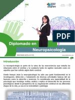 Diplomado_Neuropsicologia