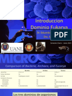 2 INTRODUCCION DOMINIO EUKARYA ENERO JUNIO 2015    1-1.pdf