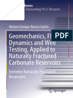 Nelson Enrique Barros Galvis - Geomechanics, Fluid Dynamics and Well Testing, Applied to Naturally Fractured Carbonate Reservoirs