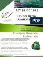LEY 99.pdf