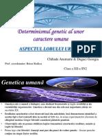 255835836 Determinismul Genetic