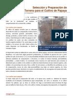 13. Seleccion y Preparacion de Terreno Para Cultivo de Papaya