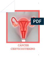 Equipo 8 Cáncer Cervicouterino