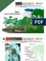 Relación agua y bosque en la cuenca del río Pachitea