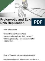 2019 Prokaryotic and Eukaryotic DNA Replication