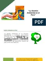 1 La Gestion Ambiental en El Perú (2)