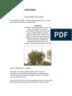 Exemplos_roteiro