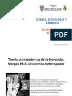 22va_clase__mosca_de_la_fruta