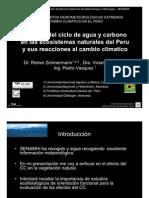 Control del ciclo de agua y carbono en los ecosistemas naturales del Perú