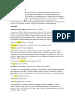 Inglés - Categorías gramaticales.docx