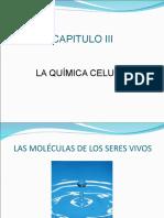 Química Celular PRI#9B4