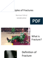 Principles of Fractures