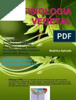 Diapositiva_ Grupo - Fisiologia Vegetal