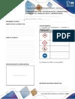 Anexo - Formato Preinformes e Informes (1)22