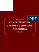 USAT_(2019)_ensayo _Formato333 (1).docx