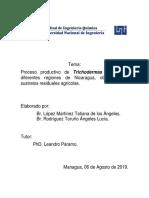 Protocolo Lucia Tatiana.docx