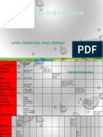 Procesos Presentacion Final Luisa Paez