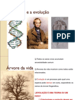 F+¦sseis e a evolu+º+úo