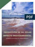 produccion de sal