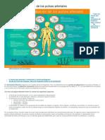 10 Puntos de Palpación de Los Pulsos Arteriales