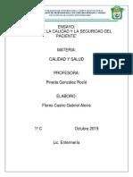 ENSAYO CALIDAD Y SALUD.docx