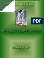 pares biomagneticos 234561.ppt