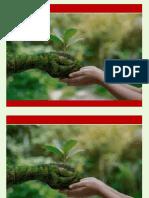 PresentaciónNICOLE.pptx