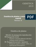 teorica-14-2019.ppt