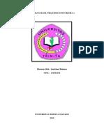 Laporan Hasil Praktikum Fitokimia 1 - Rya Balansa
