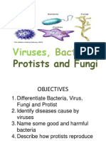 Viruses_Bacteria_Protists_and_Fungi.ppt