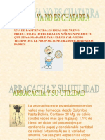 arracacha
