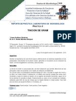 Tincion de gram-Introduccion desarrollo e interpretacion de resultados Practica 2