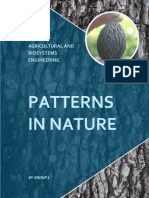 PATTERNS IN NATURE final final.pdf