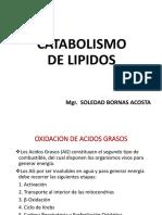 CATABOLISMO-LIPIDOS