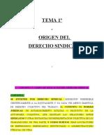 TEMA 1 Derecho Sindical