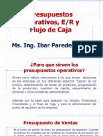 Presup.operat. Est.result. y Flujo de Caja_2019 Last
