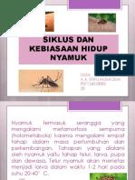 Siklus Dan Kebiasaan Hidup Nyamuk