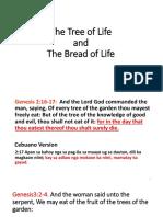 Jesus the Bread of Life.pptx