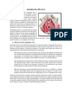 DIAFRAGMA  PELVICO.docx