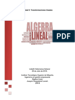 Lisbeth Salamanca Salazar ALGEBRA LINEAL APA.docx