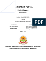 final working project report.docx