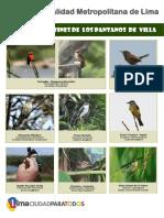 CARTILLA_DE_TIRANIDOS_Y_AFINES_DE_PANTAN.pdf
