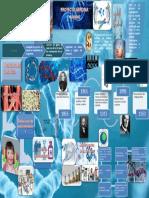 Infografia Genoma Humano