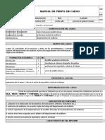 manual del perfil del cargo auditor septiembre 2019.xlsx
