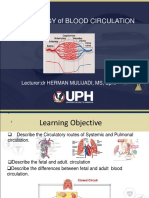 Lecture 11 - circulation .UPH.BB 2019.ppt