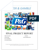 p&g Project Report