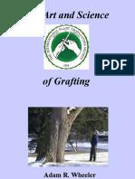grafting.pptx