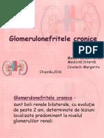 Glomerulonefritele Cronice