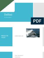 Delfin Ppt